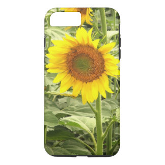 Sonnenblume iPhone 8 Plus/7 Plus Hülle