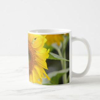 Sonnenblume-Kaffee-Tassen-Entwurf zwei Kaffeetasse