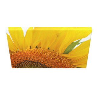 Sonnenblume-Leinwand-Druck-Entwurf #1 Leinwanddruck