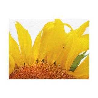 Sonnenblume-Leinwand-Druck-Entwurf einer Leinwanddruck