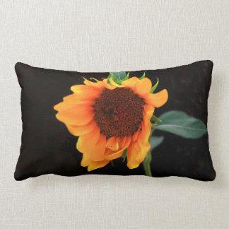 Sonnenblume Lendenkissen