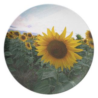Sonnenblume-Nahaufnahme Melaminteller