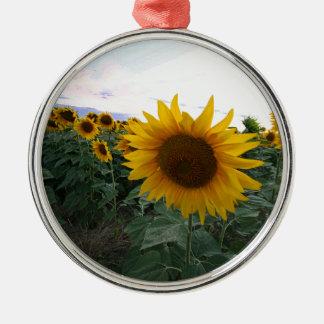 Sonnenblume-Nahaufnahme Silbernes Ornament