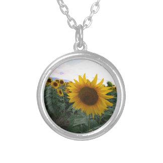 Sonnenblume-Nahaufnahme Versilberte Kette