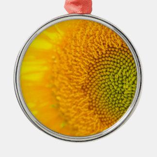 Sonnenblume nahes hohes Photgraph Silbernes Ornament