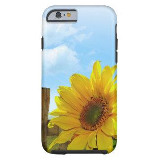 Sonnenblume-Natur-Schönheit Tough iPhone 6 Hülle