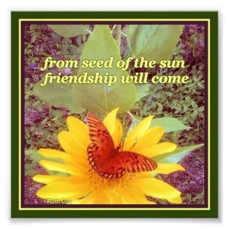 Sonnenblume-Schmetterlings-Freundschafts-Samen Kunstfotos