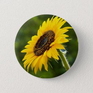 Sonnenblume Sideshot Runder Button 5,7 Cm