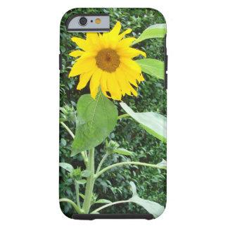 Sonnenblume-Solo Tough iPhone 6 Hülle
