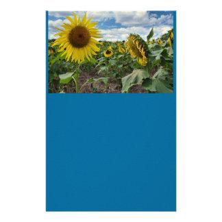 Sonnenblume stationär druckpapier