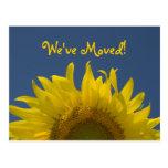 Sonnenblume-steigende Adressenänderung Postkarte
