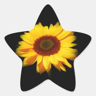 Sonnenblume Stern-Aufkleber