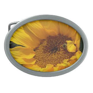 Sonnenblume Sun Ovale Gürtelschnallen