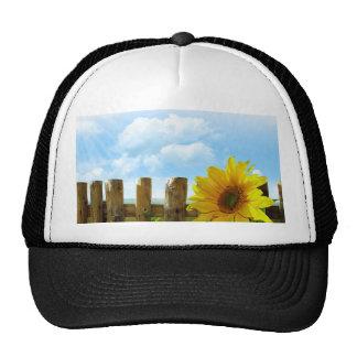 Sonnenblume-Szene Baseball Caps