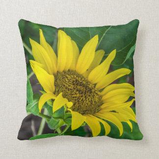 Sonnenblume-Wurfskissen Kissen