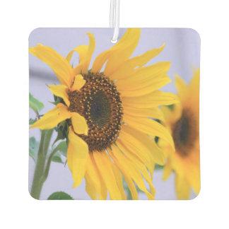 Sonnenblumeblütenauto-Luft freshner Lufterfrischer