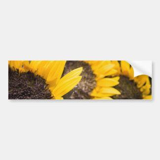 Sonnenblumehimmel Auto Sticker