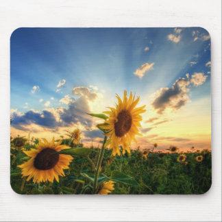 Sonnenblumen Mousepad