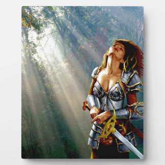 Sonnenlicht-Krieger Fotoplatte