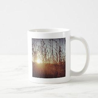 Sonnenschein durch die Grasland-Gräser Kaffeetasse