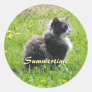 Sonnenschein-Katzen-Aufkleber Runder Aufkleber