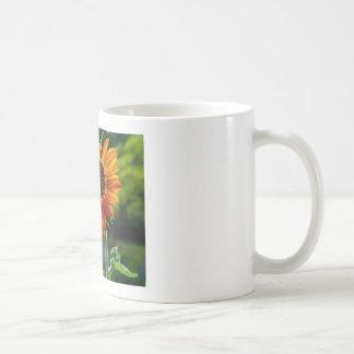 Sonnenschein-Sonnenblume Tasse