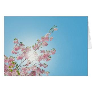 Sonnenschein-und Blumenvalentines Tageskarte Karte