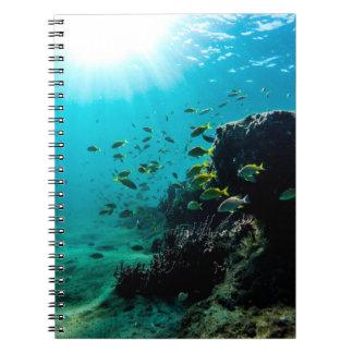 Sonnenschein und tropische Fische Notizblock
