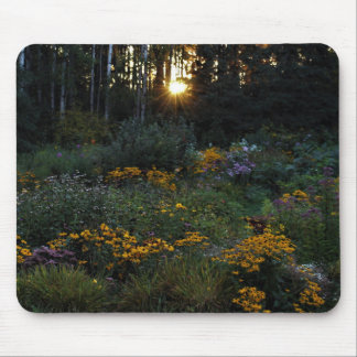 Sonnenuntergang-Anfang September Gärten Mousepad