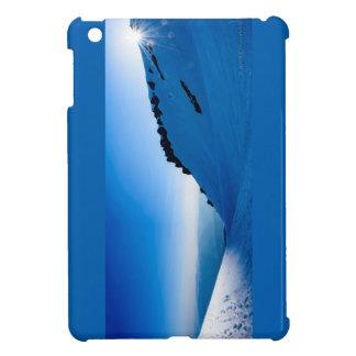 Sonnenuntergang auf einem schneebedeckten Berg iPad Mini Hüllen