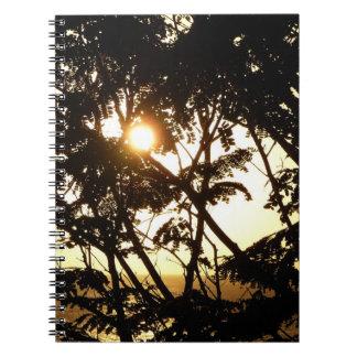 Sonnenuntergang durch tropische Fotografie der Notizblock