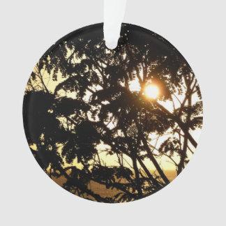 Sonnenuntergang durch tropische Fotografie der Ornament