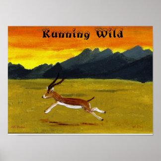 Sonnenuntergang-Gazelle, die wildes Tier-Plakat Poster