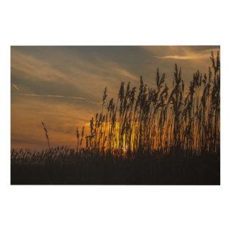 Sonnenuntergang Holzleinwand