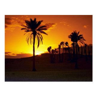 Sonnenuntergang in der Wüste, Wüste des Saharas, Postkarte