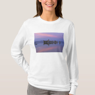Sonnenuntergang in Monosee, CA T-Shirt