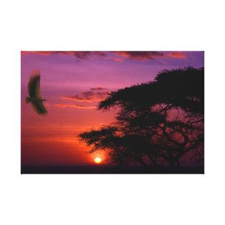 Sonnenuntergang in Serengeti Leinwanddruck