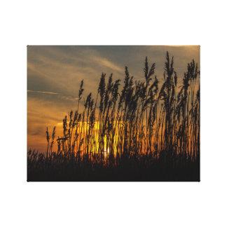 Sonnenuntergang Leinwand Drucke