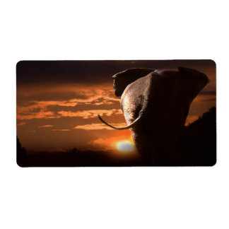 Sonnenuntergang mit Elefanten