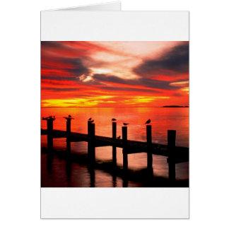 Sonnenuntergang-Seemöwen an Fort Myers Florida Karte