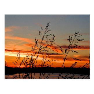 Sonnenuntergang-Silhouette Postkarte