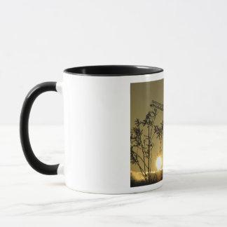Sonnenuntergang-Silhouette-Tasse 2 Tasse