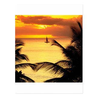 Sonnenuntergang St Lucia Postkarte