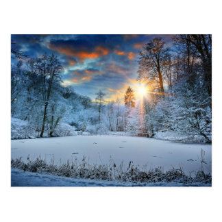 Sonnenuntergang über Winter-Forestsee Postkarte