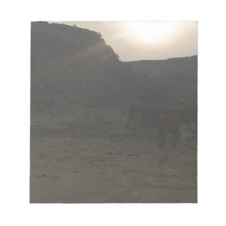 Sonnenuntergang-Vieh Notizblock