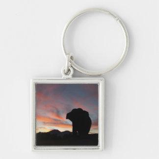 Sonnenuntergangelefant keychain schlüsselanhänger