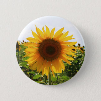 Sonnige Sonnenblume Runder Button 5,1 Cm