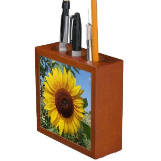 Sonnige Sonnenblume Stifthalter