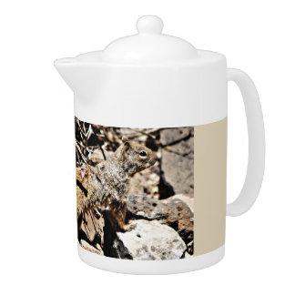 Sonoran Eichhörnchen-Tee-Topf