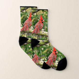 Sonoran Kardinals-Unisexsocken Socken